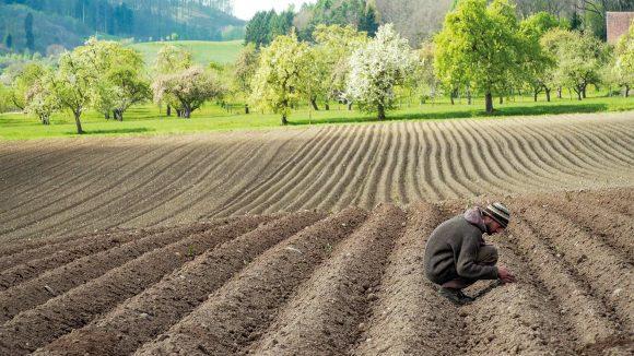 Wie geht es unseren Böden?